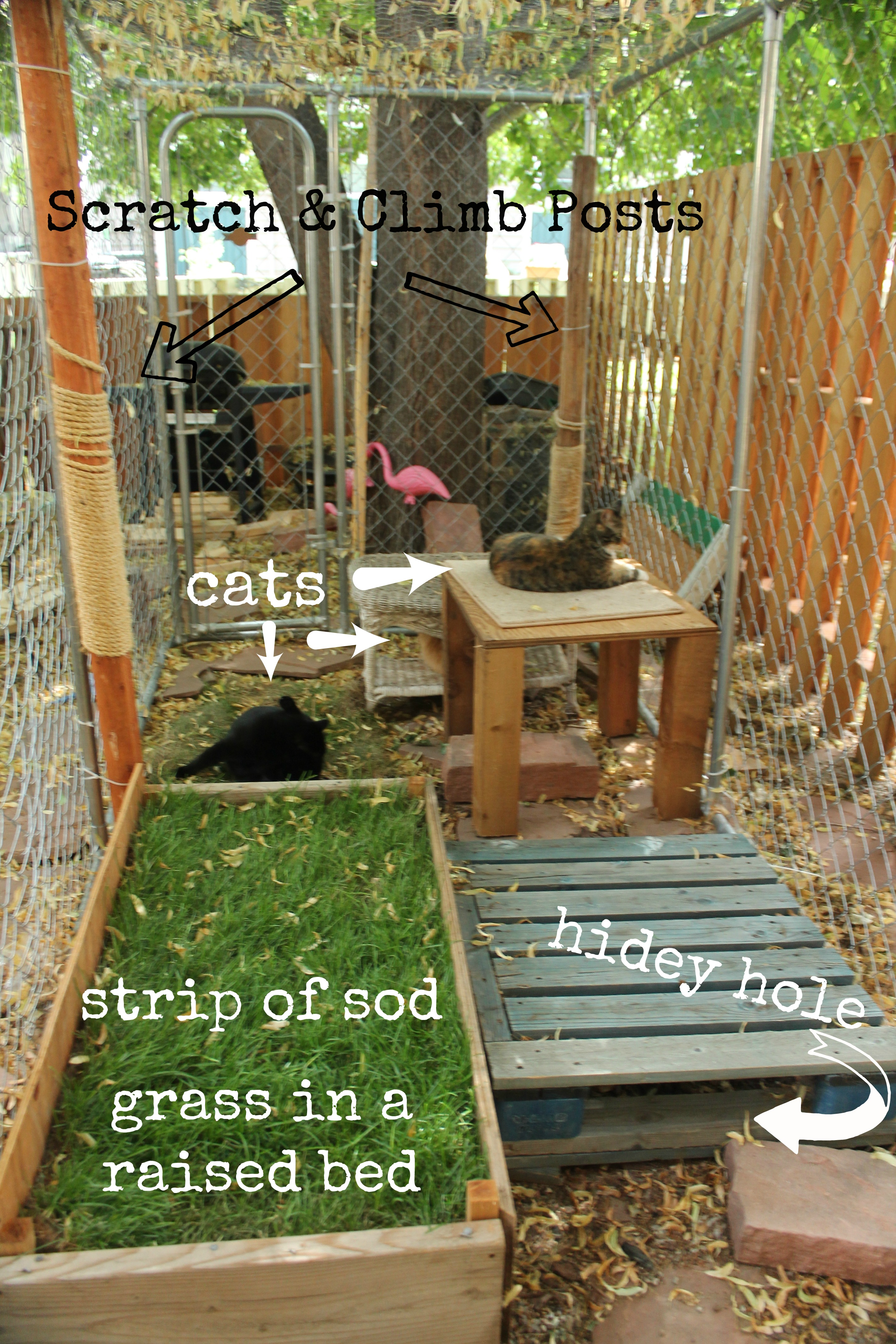 Decrease Naughty Cat Syndrome by Adding a Catio | Catty Shack Designs